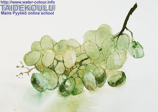 Мастер-класс  акварельный натюрморт с виноградом-6