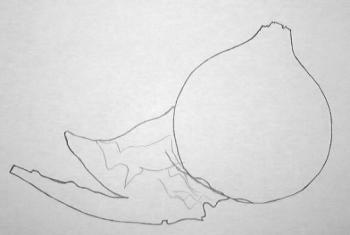 рисуем лук набросок