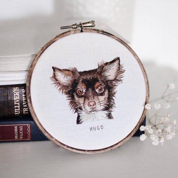 Обворожительные портреты животных от Эмили Феррис (Emillie Ferris)