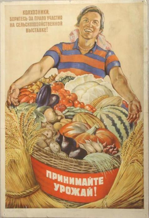 Плакат-агитка о Всесоюзной сельскохозяйственной выставке. Художники: Шубина Г.; Легран О. 1954 год