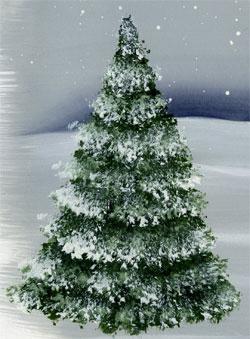 Как нарисовать зимнюю ёлку в снегу